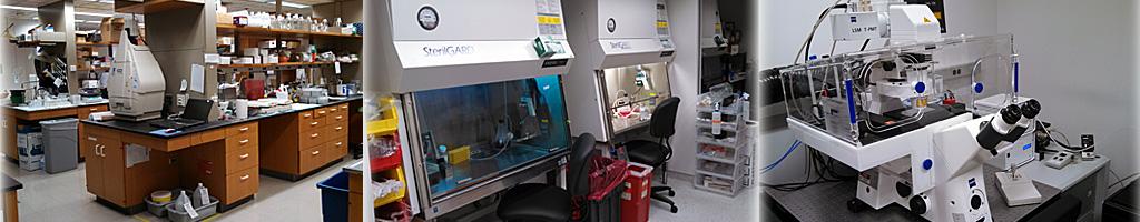 Lab_layout